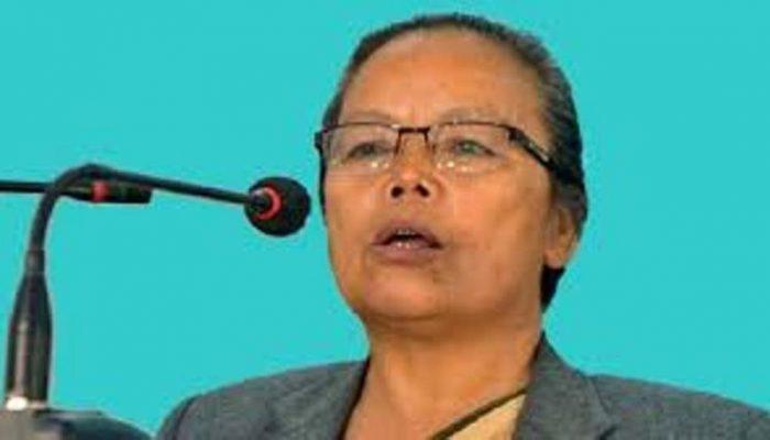 नेपालमा लगानी भित्र्याउन महिलामन्त्री थापाको प्रवासीलाई आग्रह