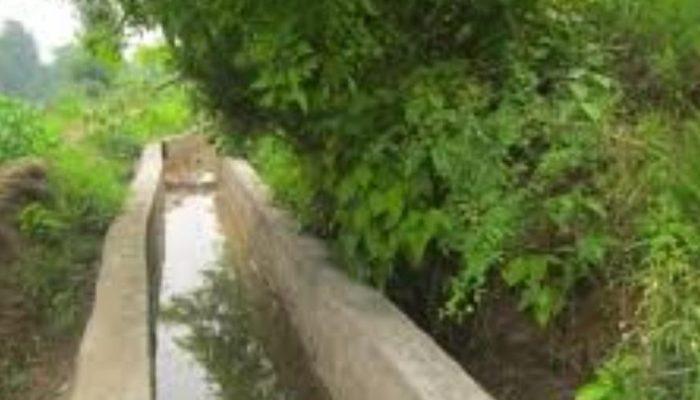 तिनाउ गाउँपालिकाले खेतीयोग्य जमिनमा सिँचाइको पहुँच बढाउँदै