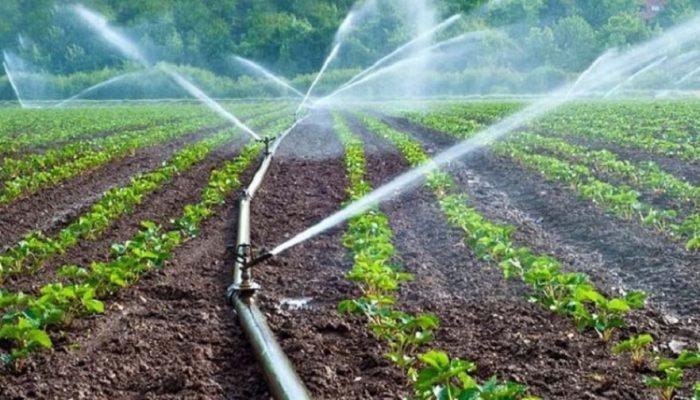 कृषि कर्मबाटै मासिक एक लाख रूपैयाँ बचत